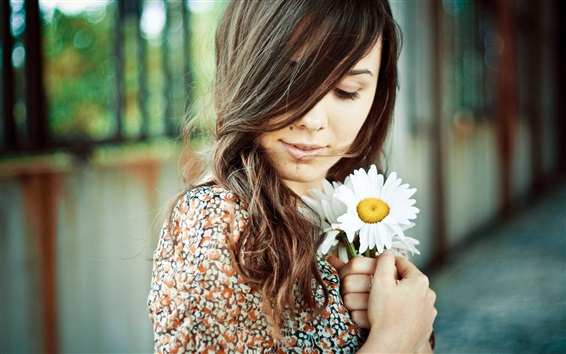 Wallpaper Brunette girl, chamomile in hands