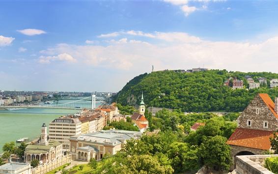 Fond d'écran Budapest, Danube, ville, maisons, pont, arbres, ciel, nuages