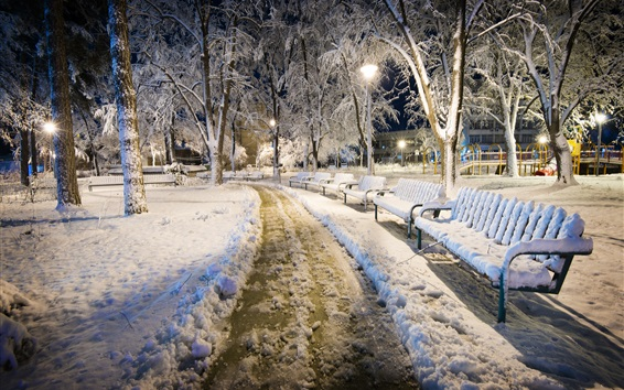 Wallpaper Bulgaria, night, snow, park, bench, cold winter