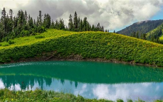 Обои Канада, Британская Колумбия, Чилливак, Логово озеро, горы, деревья, зеленый