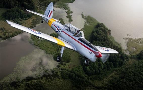 Hintergrundbilder De Havilland DHC-1 Chipmunk, Flugzeug, fliegen