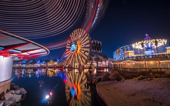壁纸 迪斯尼乐园,摩天轮,公园,夜晚,灯光