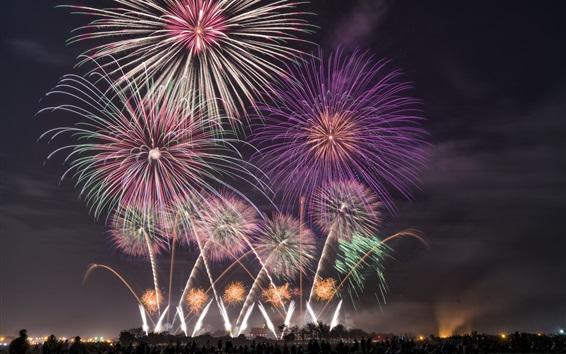 Wallpaper Fireworks, holiday, night, sky, beautiful