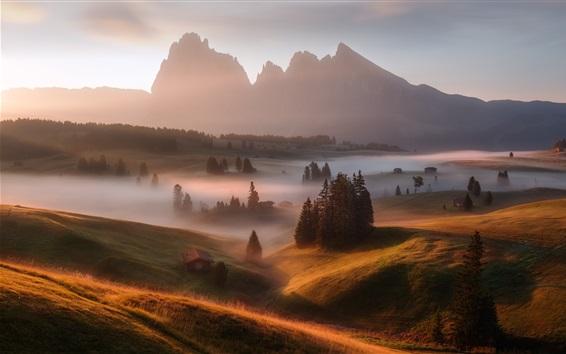 Wallpaper Germany, Alps, morning, fog, grass, trees, houses
