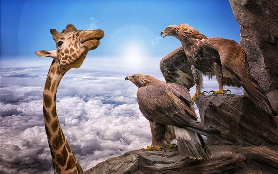 Wallpaper Giraffe head, eagles, height, clouds, sky, creative picture