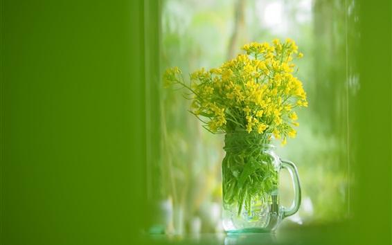 Fond d'écran Coupe en verre, fleurs de colza jaune, fond vert