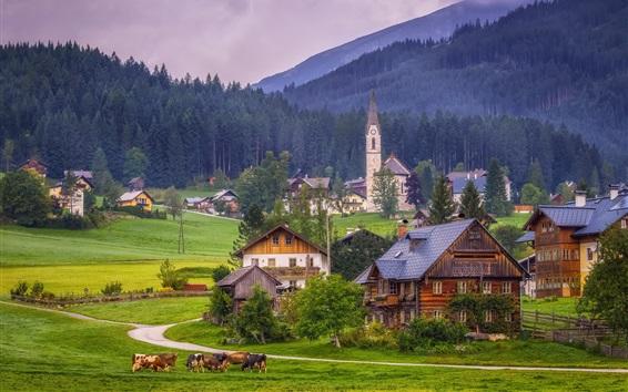 Wallpaper Gosau, Austria, Alps, church, houses, village, trees