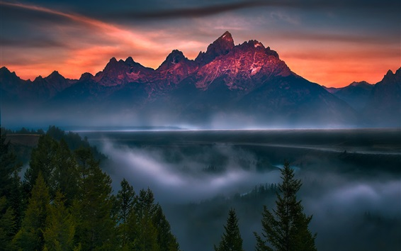 Wallpaper Grand Teton National Park, trees, river, fog, dusk, USA