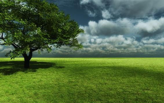 Wallpaper Green meadow, tree, sky, clouds