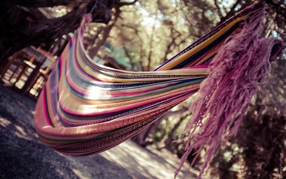 Wallpaper Hammock, fabric, colorful