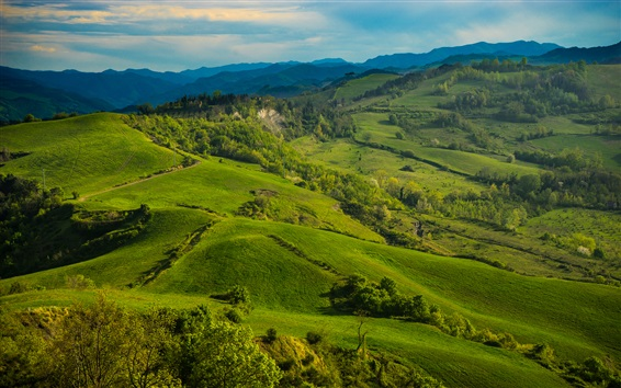 Wallpaper Italy, Tuscany, meadows, hills, field, green grass, trees