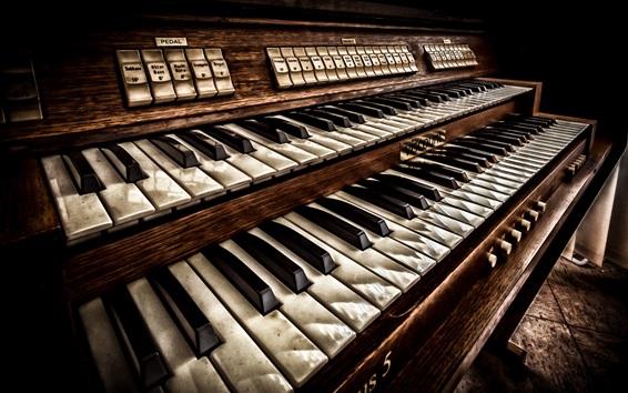 Wallpaper Keyboard instrument, music
