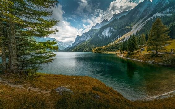Fond d'écran Lac, montagnes, arbres, forêt, ciel, nuages