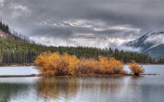 Papéis de Parede Lago, árvores, nuvens, outono
