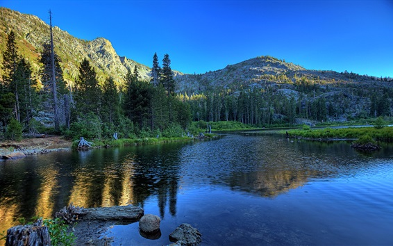Wallpaper Lake, trees, mountains, water reflection