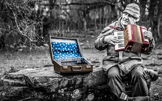 Wallpaper Man play accordion, music, box, retro style