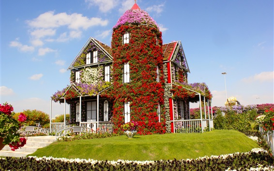 Wallpaper Miracle Garden, flowers covered the house, lawn, Dubai, UAE
