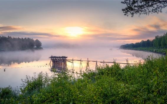 Papéis de Parede Manhã, nevoeiro, rio, árvores, arbustos, amanhecer