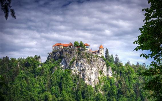 Wallpaper Mountain top, castle, trees, Slovenia