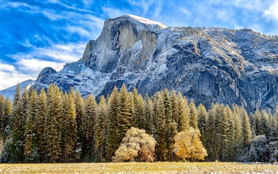 Fondos de pantalla Montaña, árboles, hierba, otoño