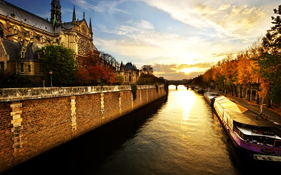 Wallpaper Notre Dame, Paris, France, trees, river, morning, sunrise