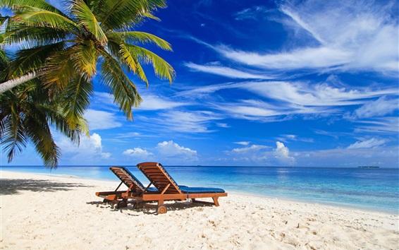 Fond d'écran Palmiers, paradis, plage, chaise longue, mer, été, tropical