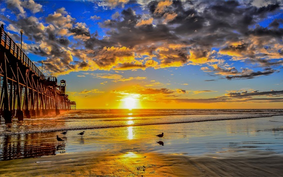 Papéis de Parede Pier, mar, pássaros, nuvens, pôr do sol