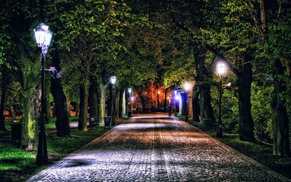 Wallpaper Poland, Rzeszow, night, alley, trees, lights, park