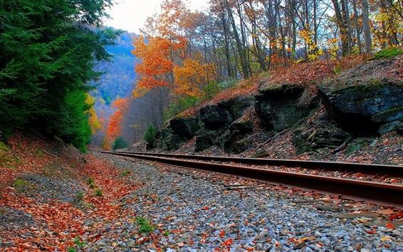 Обои Железная дорога, деревья, камни, осень