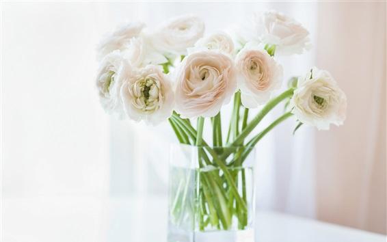 Wallpaper Ranunculus flowers, vase, bokeh