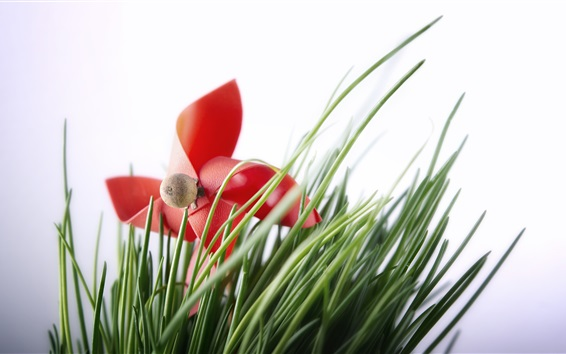 Wallpaper Red toy windmill, grass, white background