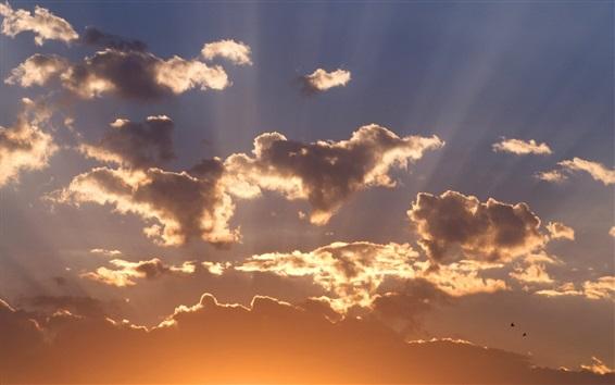 Wallpaper Sky, clouds, sunset, birds
