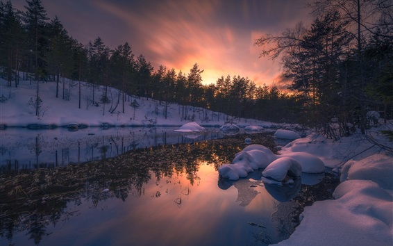 Wallpaper Snow, river, trees, sunset, winter, Ringerike, Norway