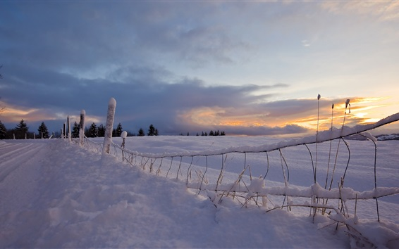 Wallpaper Snow, road, fence, sunset, winter