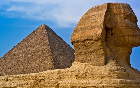 Wallpaper Sphinx sculpture, Egypt