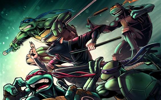 Fondos de pantalla Teenage Mutant Ninja Turtles, anime clásico