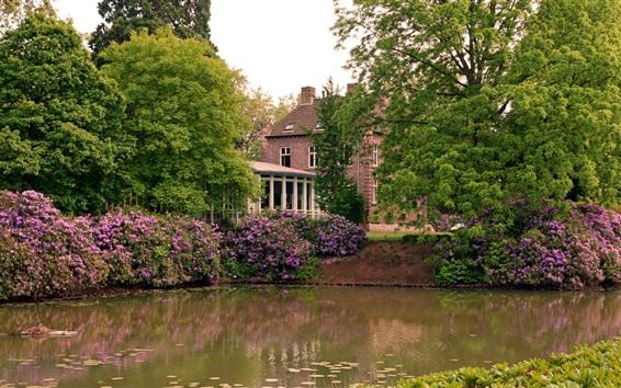 Wallpaper Trees, house, flowers, pond