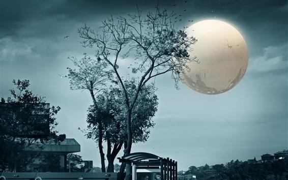 Papéis de Parede Árvores, lua, noite, design criativo