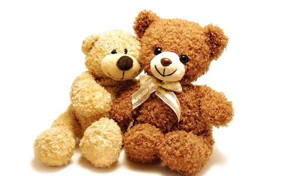 Обои Две игрушечные медведи, плюшевые
