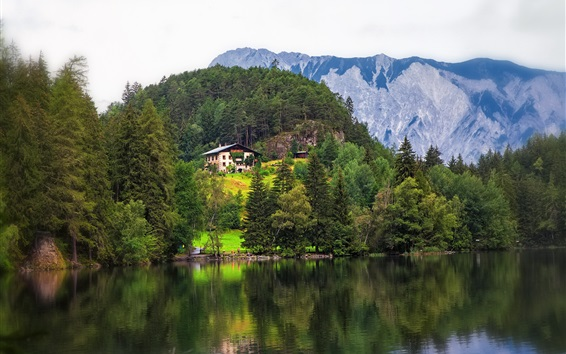 Wallpaper Tyrol, Austria, mountains, trees, river, houses