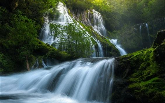 Wallpaper USA, Panther Creek Falls, beautiful nature landscape, waterfalls, forest