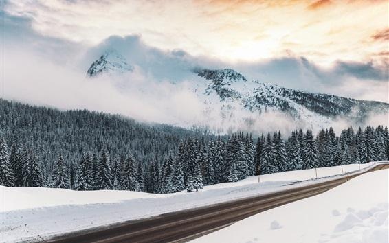 Обои Зима, снег, дорога, деревья, гора