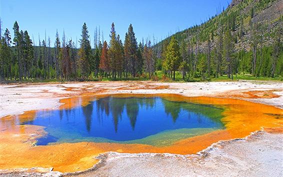 Wallpaper Yellowstone National Park, lake, trees, mountains, autumn, USA