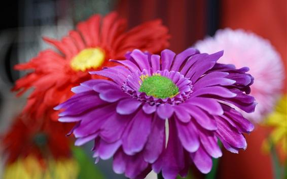 Wallpaper Artificial flowers, purple