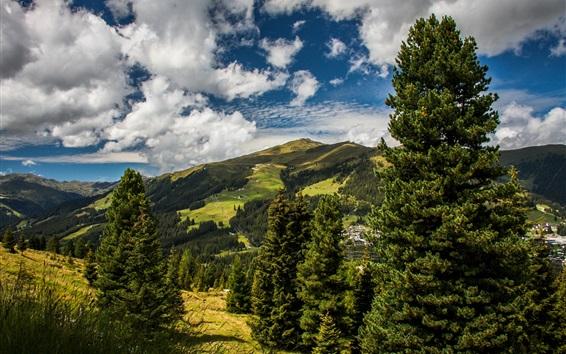 Wallpaper Austria Meadows Mountains Trees Clouds Summer
