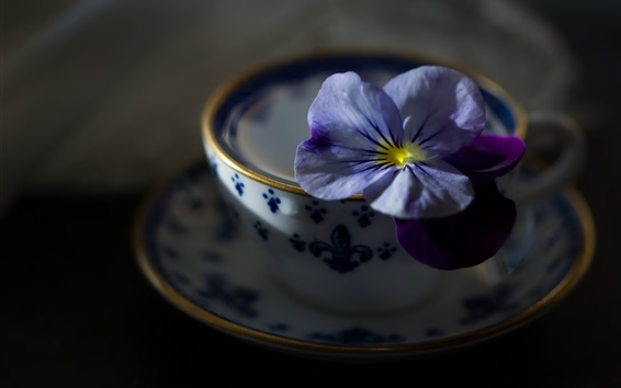 Wallpaper Blue flower and cup