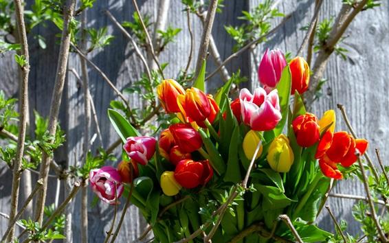 Papéis de Parede Buquê, tulipas, primavera, árvore
