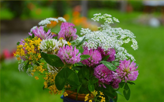 Wallpaper Colorful flowers, white, pink, yellow, spring