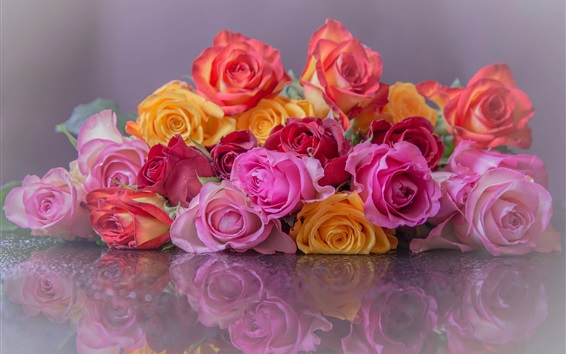Wallpaper Colorful roses, pink, yellow, red