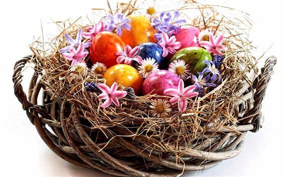 Fond d'écran Pâques, oeufs colorés, fleurs, nid, fond blanc